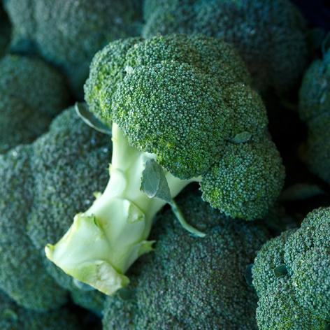 broccoli_472x472